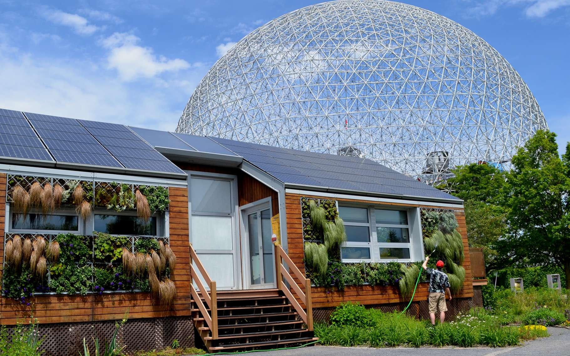 maisons ecologiques  les avantages et comment en construire une